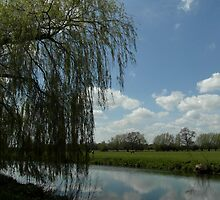 Weeping Willow Over the River by Fay Freshwater