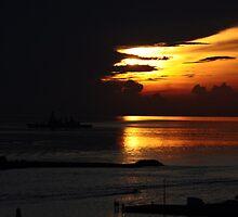 Miami Sunrise by Cindy Rubino