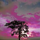 The Lonely Tree In Pink by DeeAshley