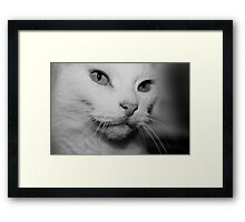 Happiness is.....  Framed Print