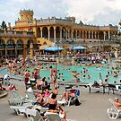 Budapest - Széchenyi Thermal Bath by rsangsterkelly