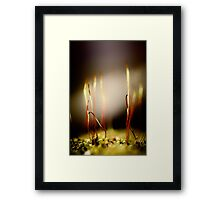 Same small world at your heels Framed Print