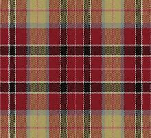 02761 St. Joseph County, Indiana E-fficial Fashion Tartan Fabric Print Iphone Case by Detnecs2013