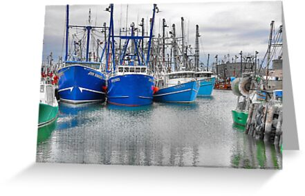 Painted Harbor by Poete100