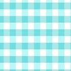 Aqua Gingham Pattern by lunalalonde