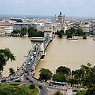 Budapest - View From The Palace by rsangsterkelly