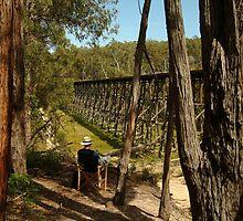 Joe Mortelliti Gallery - Trestle rail bridge, Colquhoun State Forest, eastern Gippsland, Victoria, Australia. by thisisaustralia