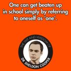 Sheldon Quote - One by TGIGreeny