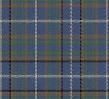 02797 Buncombe County, North Carolina E-fficial Fashion Tartan Fabric Print Iphone Case by Detnecs2013