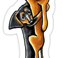 Clingy Dachshunds Sticker