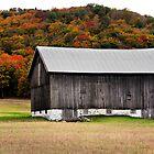 Barn with Fall Foliage by naturesangle