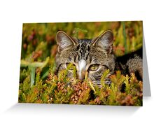 Ready For The Hunt Greeting Card