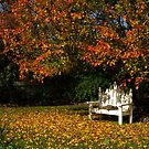 A Beautiful Autumn's Day by Gabrielle  Lees