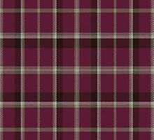 02815 Oneida County, New York E-fficial Fashion Tartan Fabric Print Iphone Case by Detnecs2013