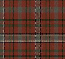 02817 Benton County, Arkansas E-fficial Fashion Tartan Fabric Print Iphone Case by Detnecs2013