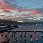 Wellington X: Room with a view by Adam Le Good
