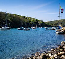 Solva Harbour by mlphoto