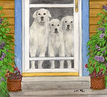 Great Pyrenees Dogs on Porch Animal Art Cathy Peek by Cathy Peek