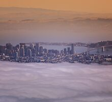 Above San Francisco by Toby Harriman