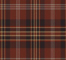 02829 Saratoga County, New York E-fficial Fashion Tartan Fabric Print Iphone Case by Detnecs2013