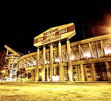 Louisiana State University Football Stadium by christysnaps