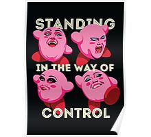 Standing in the Way of Control Poster