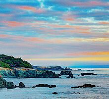Sea Ranch Evening Coast, Sea Ranch, CA by Thomas Barber