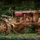 Old Tractor by Ginger  Barritt