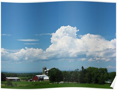 Buffalo Bucolic by artwhiz47
