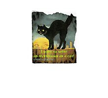 Mysterious as a Cat Photographic Print