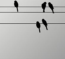 pbbyc - Birds on a Wire by pbbyc