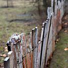 Fence - Hill End by Geoff Smith