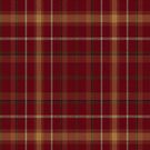 02849 Lackawanna County, Pennsylvania E-fficial Fashion Tartan Fabric Print Iphone Case by Detnecs2013