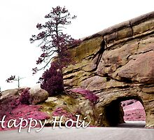 happy holi colorful landscape by maydaze
