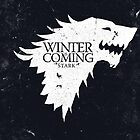 Winter is Coming by Calco