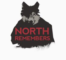 North Remembers GAME OF THRONES by RC-XD