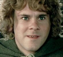 Meriadoc Brandybuck/Merry (iPad/iPhone/iPod) by aforceofnature