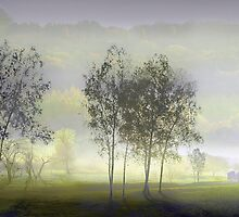 Summer Morning by Igor Zenin