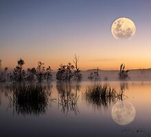 moon light by ketut suwitra