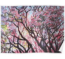 The Dogwood Tree Poster