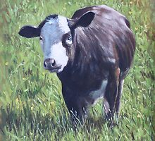 Cow in grass by martyee