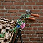 Bricks and Spokes by InkCirclesPhoto