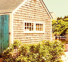 Marthas Vineyard Fishing Shed by Elizabeth Thomas