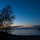 Lake Ontario Blue Hour by Georgia Mizuleva