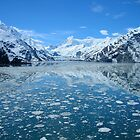 glacier bay alaska by spitfirebbmf
