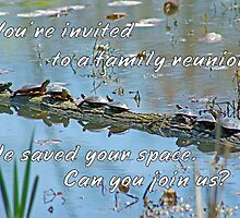 Family Reunion Invitation Greeting - Turtles by MotherNature2