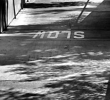 MO7S by Bob Wall