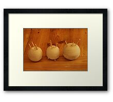 The Onion Family Framed Print