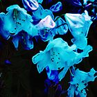 Rhododendrons in Blue, Floral, Blue Flowers by Val  Brackenridge