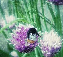 Busy Little Bee by INFIDEL